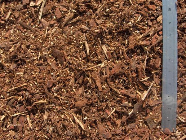 fine pine bark